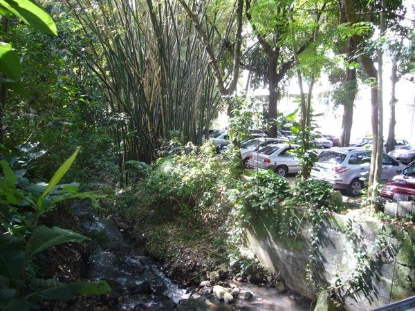 puc-rio-campus-min5